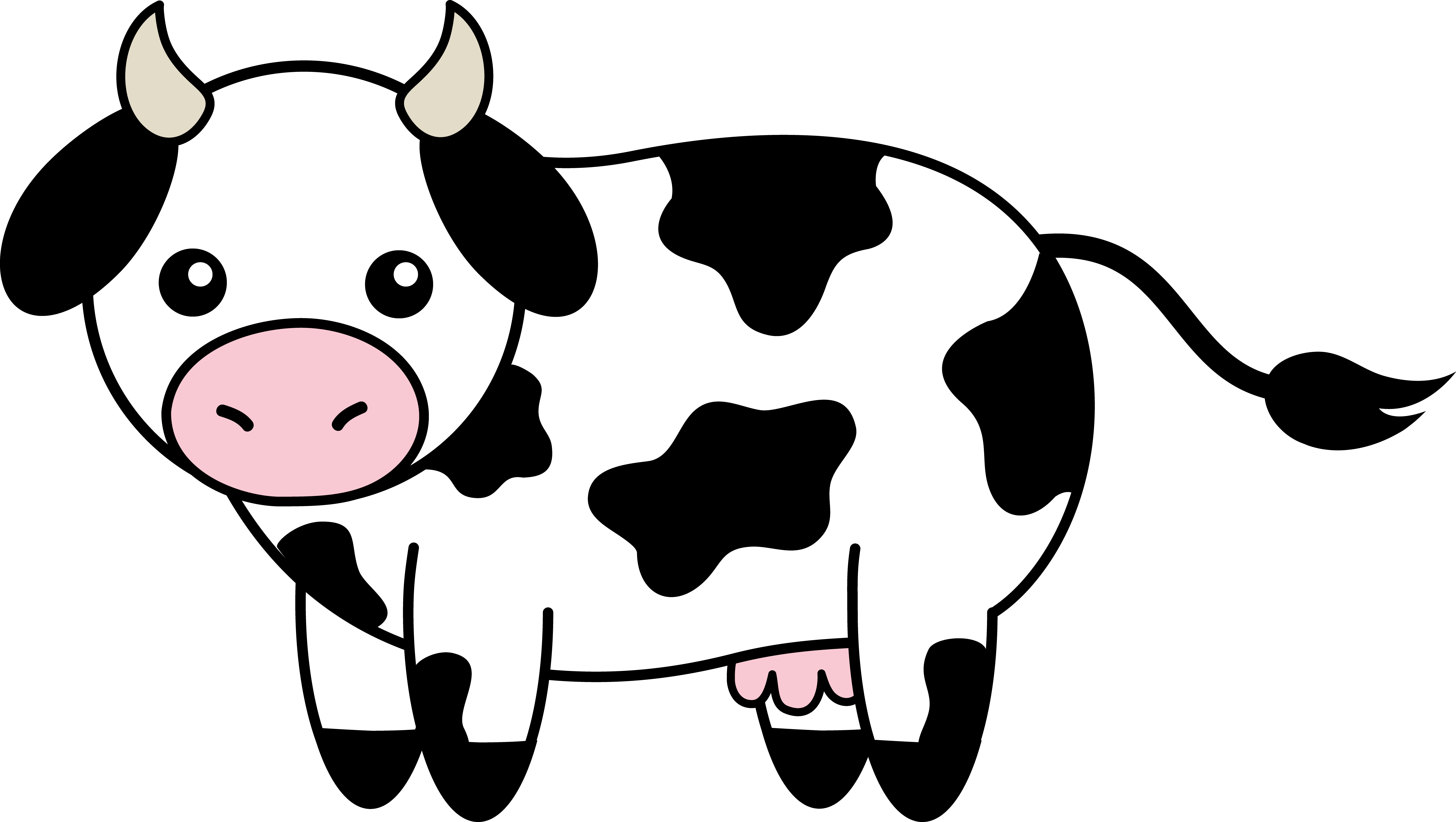 cow_black_white